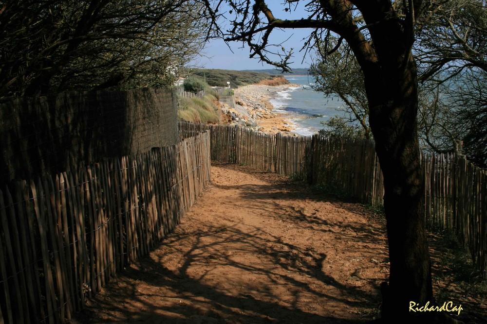 Sentier de bord de mer