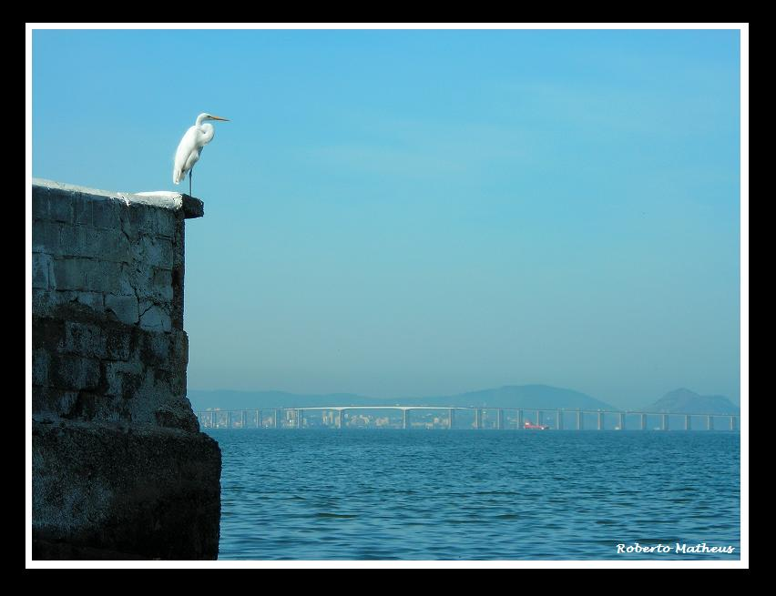 Sentinela Branca - White Sentry / Series: Silhouettes of Rio.