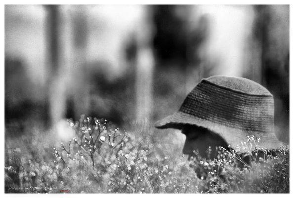 Sentirsi in un campo di fiori....