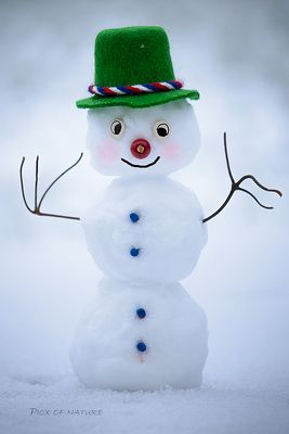 Seppel, the red nosed Snowman