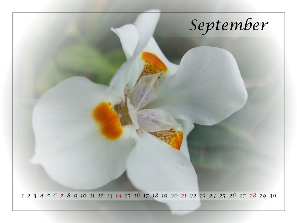 September 08