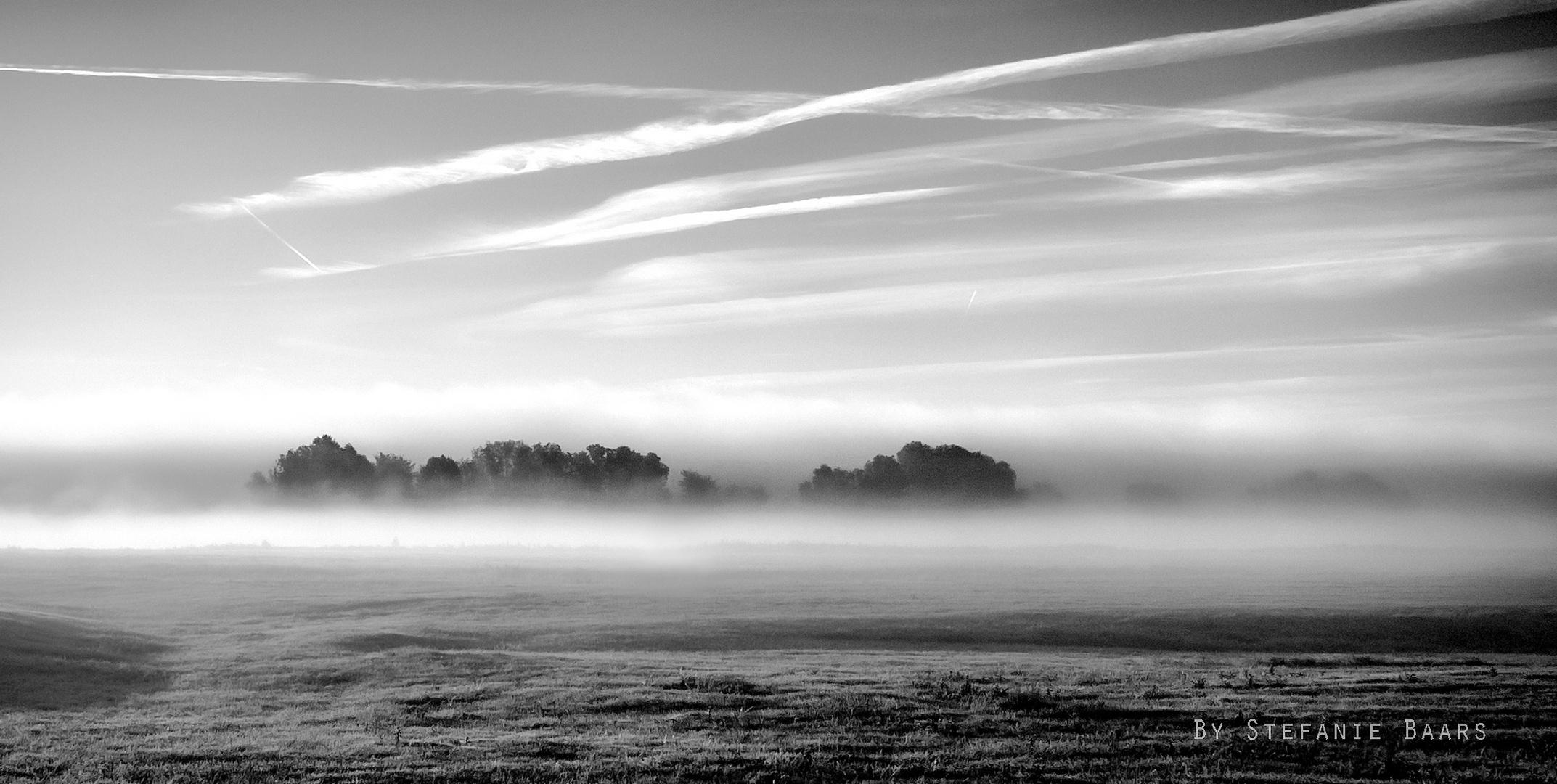 September Morgen III