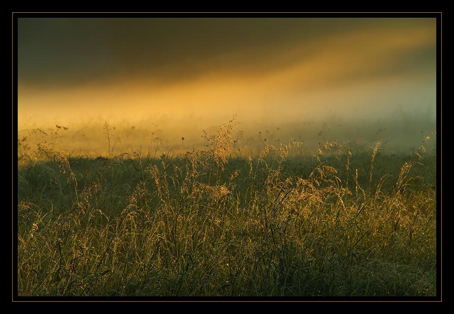 September - Morgennebel...