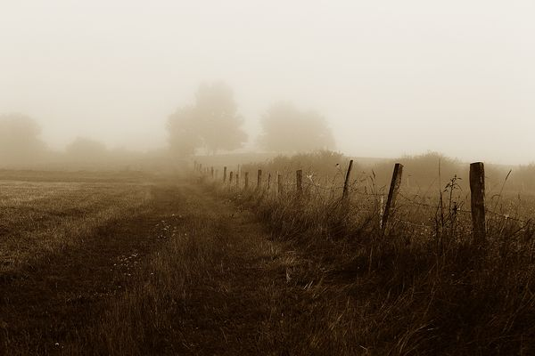 September-Nebel