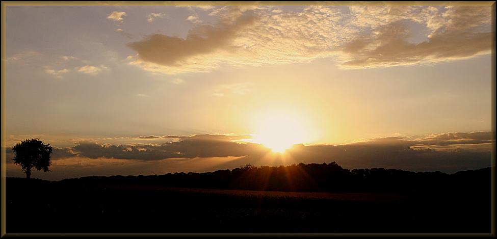 Septemberabend in Untergimpern