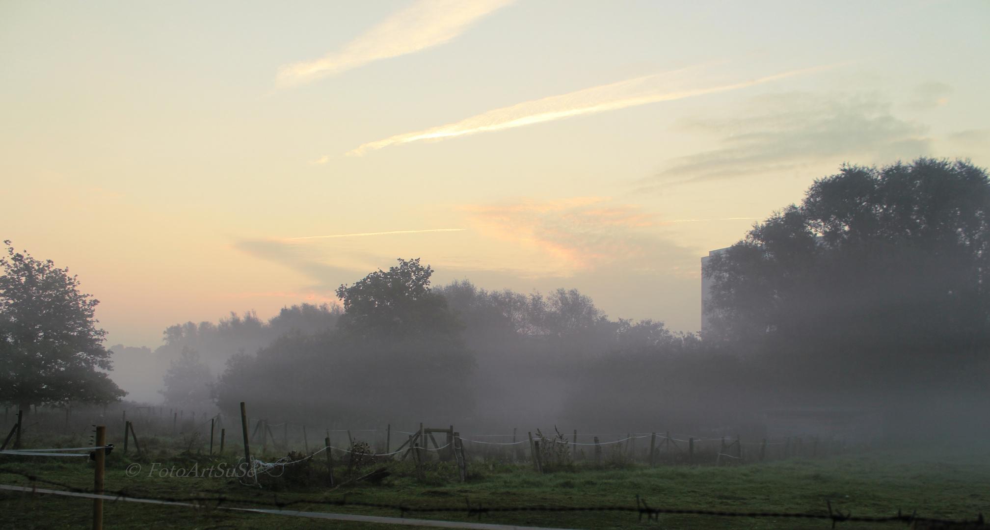 Septembermorgen 2