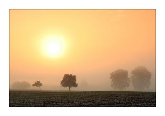 Septembermorgen