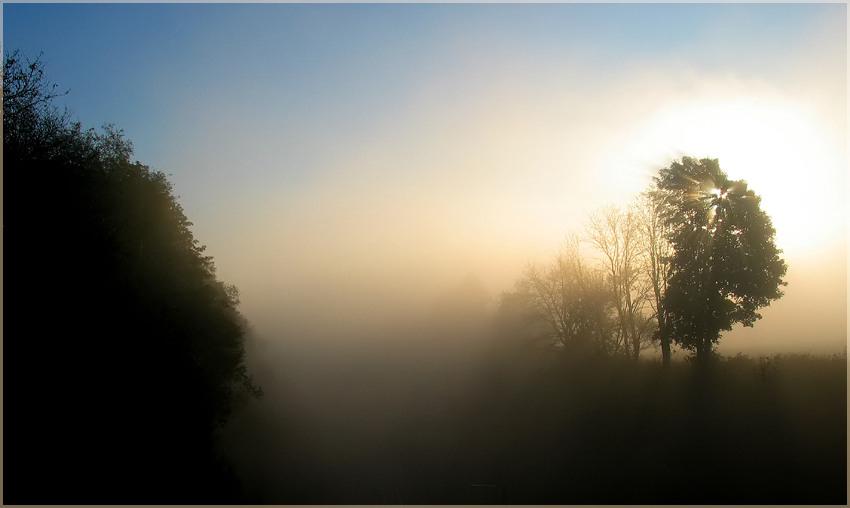 Septembermorgen V