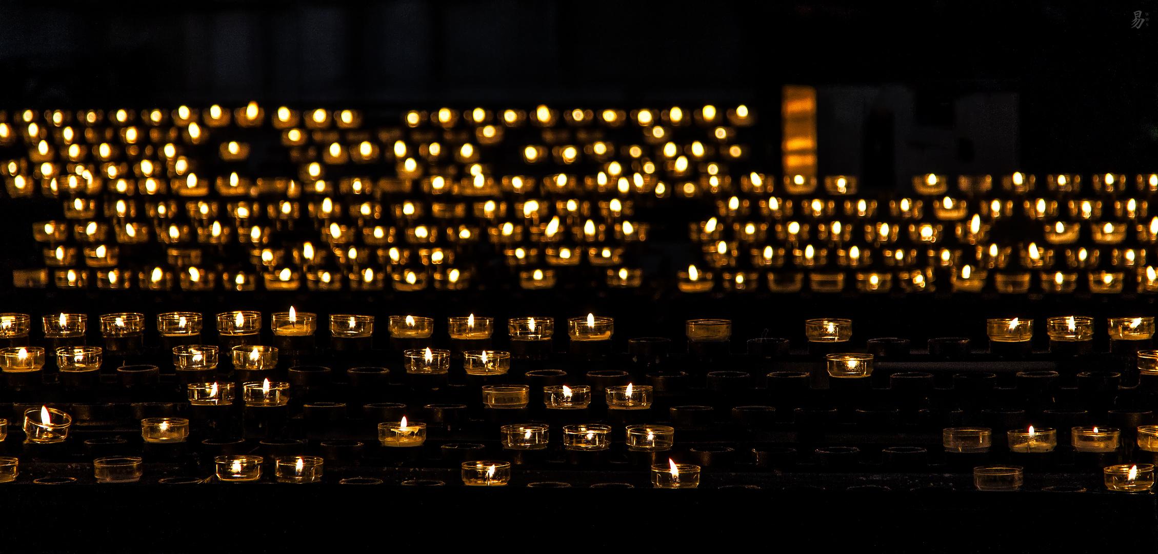 serenade of light