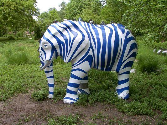 Serie: Elefant 004