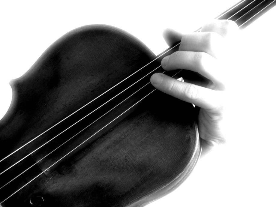 Serie Viola - 5 -