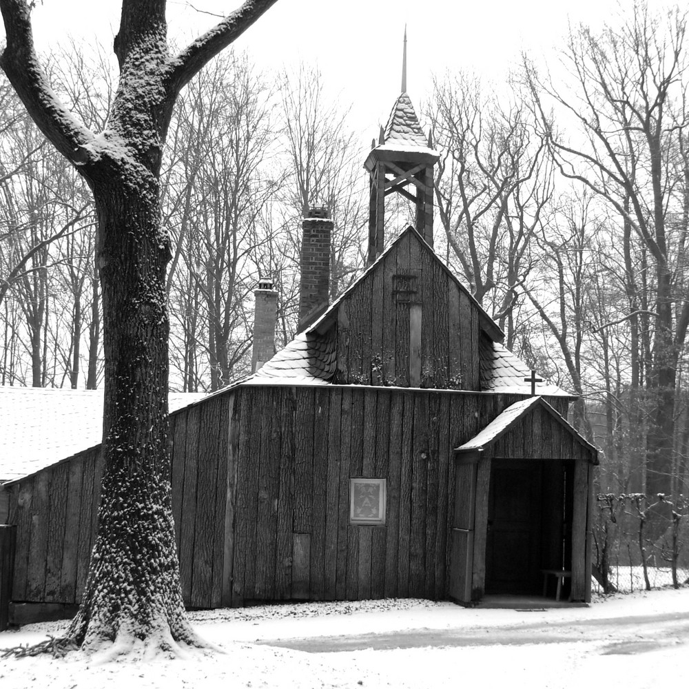 Serie:Winter in Parks6