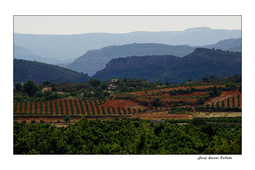 Serranía Baja (Bugarra, Gestalgar...)