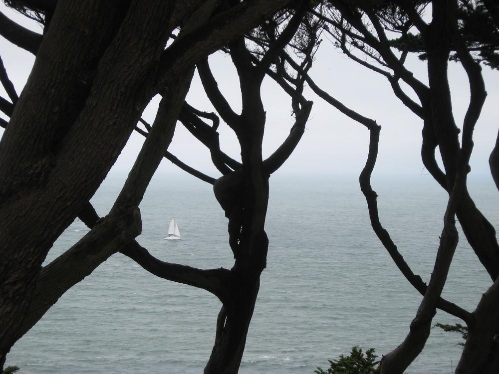 Seul bateau à l'horizon