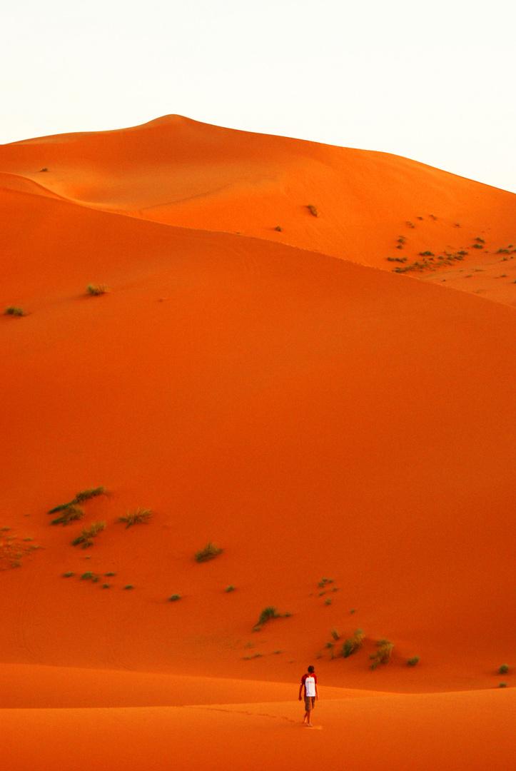seul dans le désert...