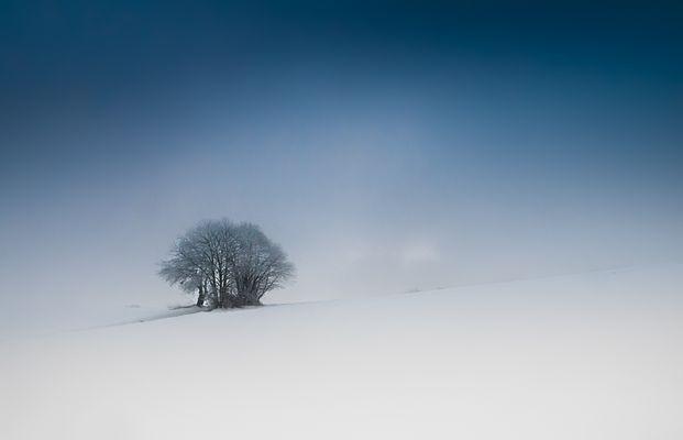 seul dans le froid