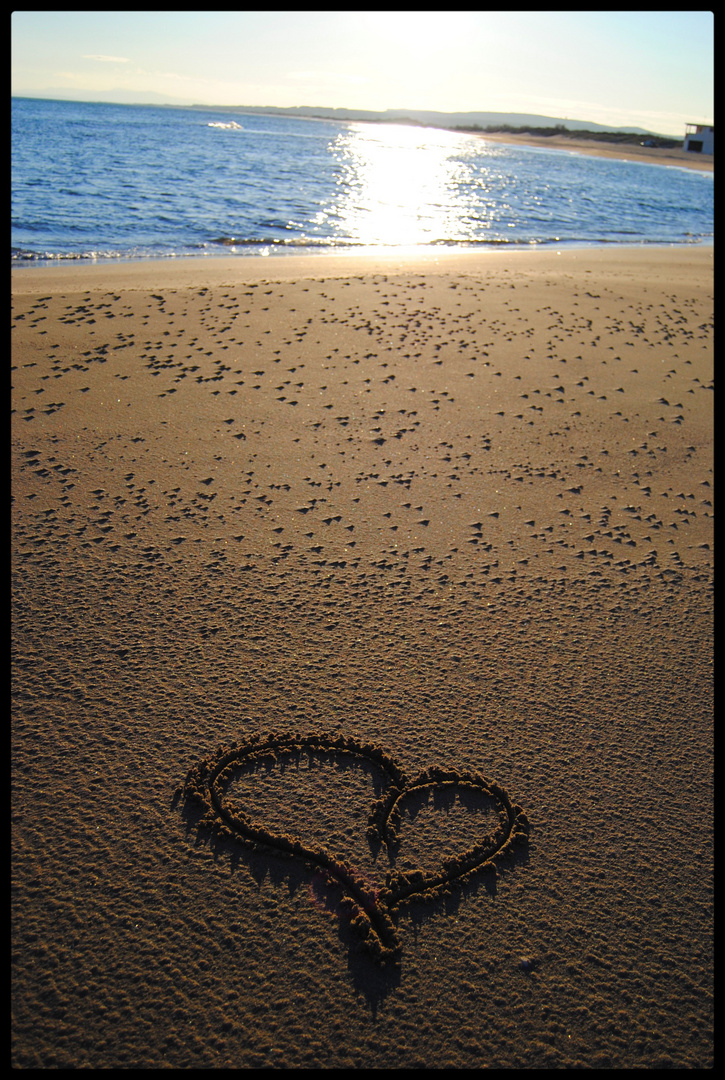 Seule sur la plage .......