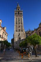 Sevilla Turm der Kathedrale mit Pferd