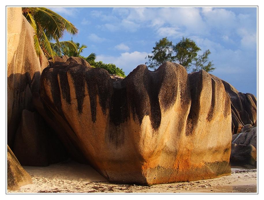 Seychellen eben... (II)