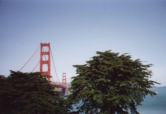 S.F. Golden Gate Bridge (April 2002) Original