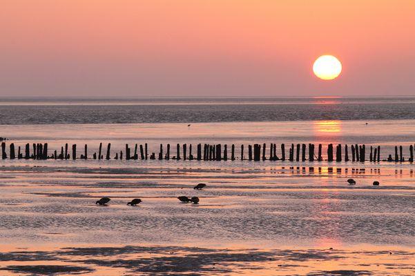 Sfumature del tramonto (2)