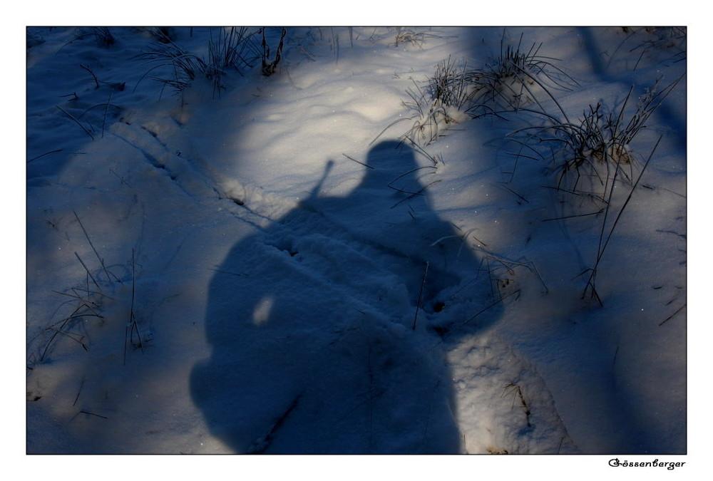 ~ shadow hunter ~