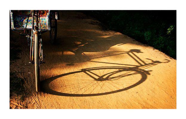 shadow of a rickshaw