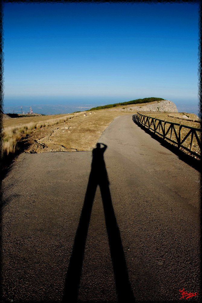 Shadow On The Road...