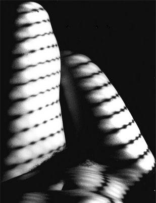 Shadows 2