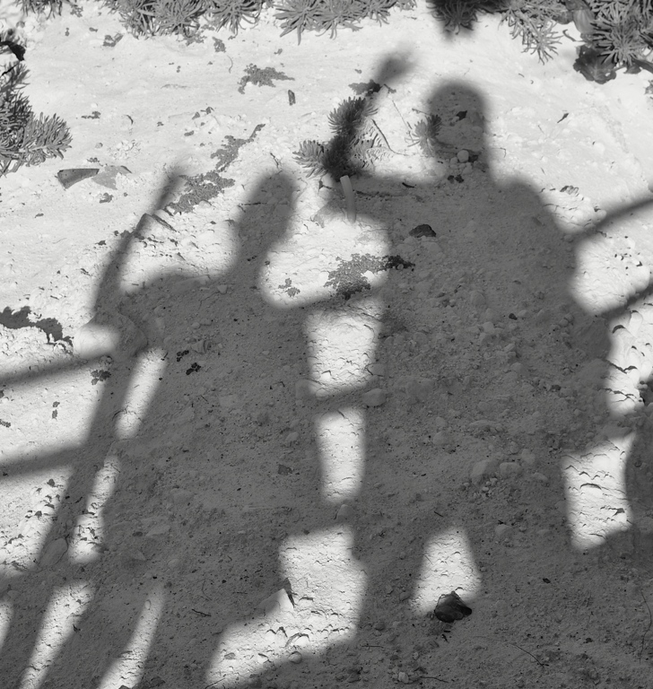 Shadows at the beach