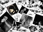 [shake it like a polaroid picture.]