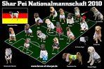 Shar Pei Nationalmannschaft 2010