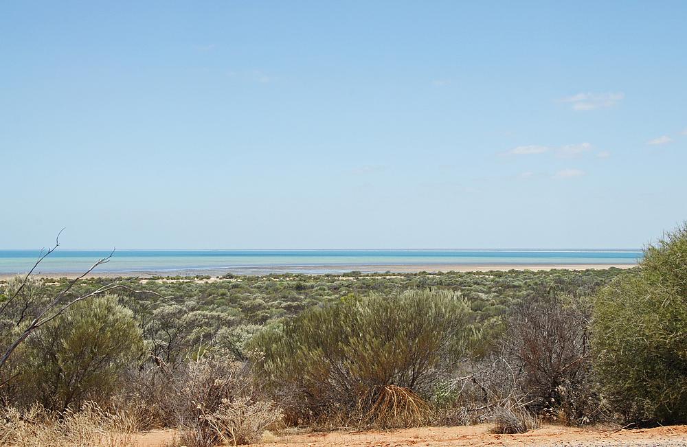 ,,Shark Bay 2..