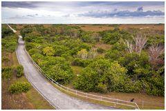 Shark Valley, Everglades ...