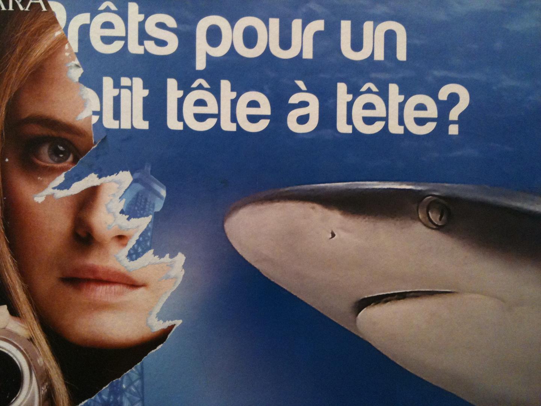 Sharker