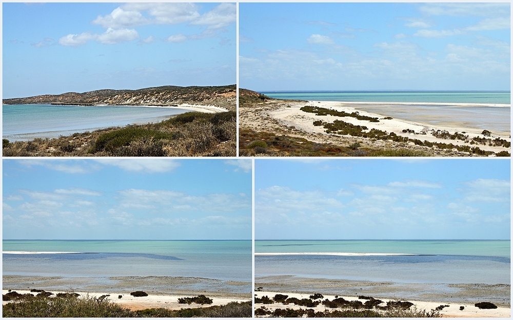 ..Shell Beach 6..