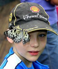 Shell Diesel V-Power