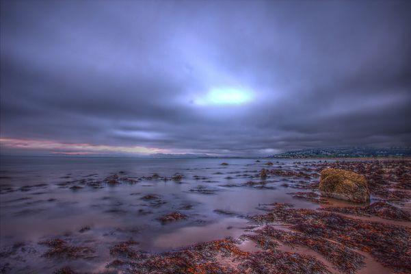 Shell-Island Wales 2012