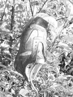 Shoe 4 Nature