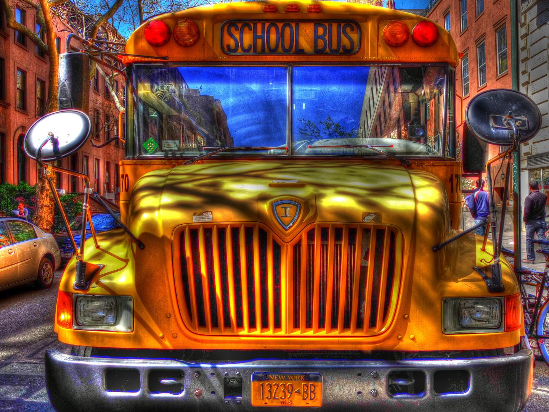 Shool Bus