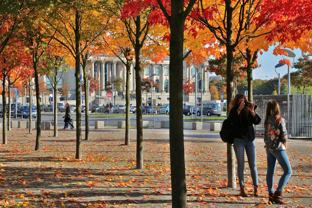Shooting Autumn Scenes