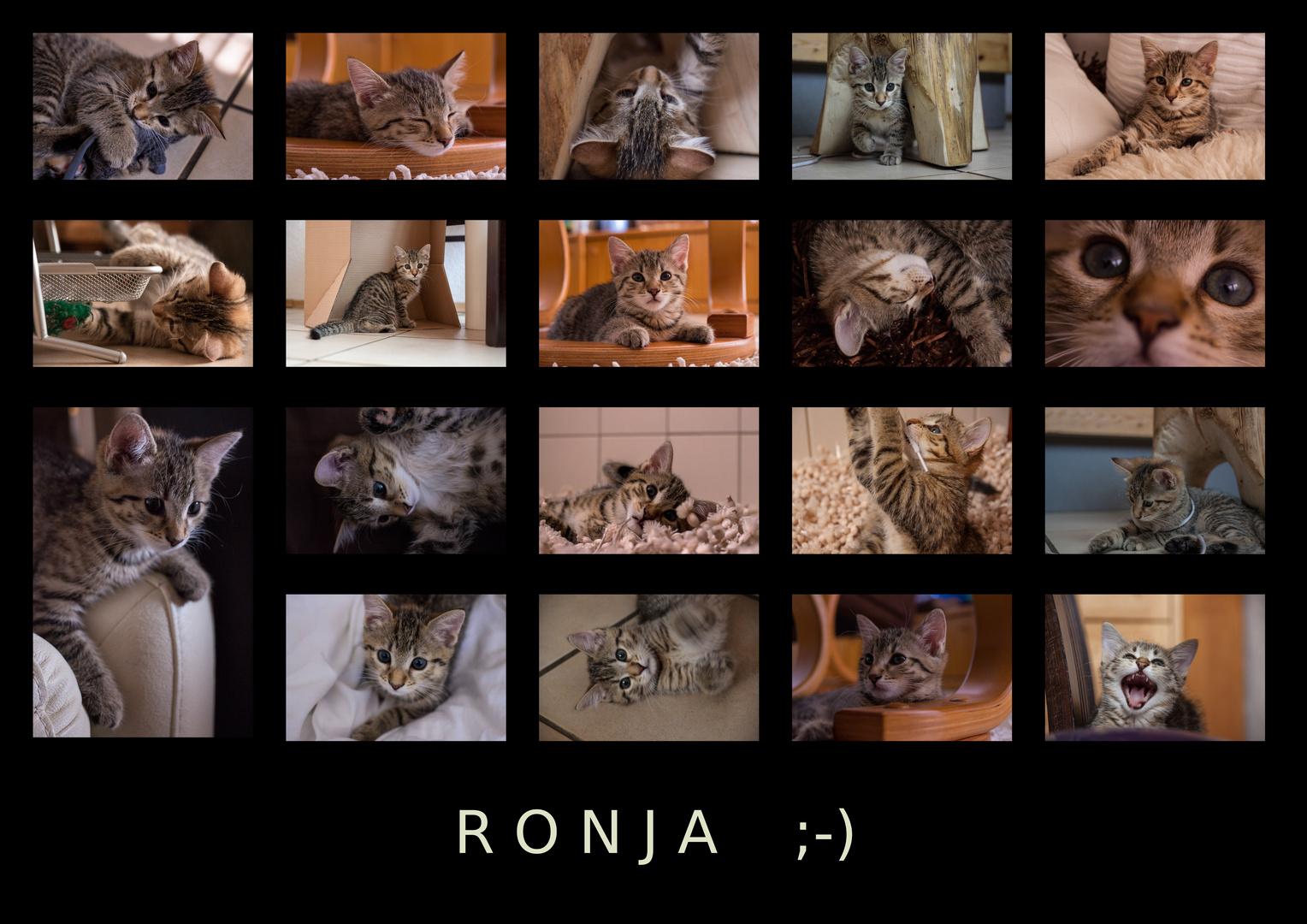Shooting mit Model Ronja ;-)
