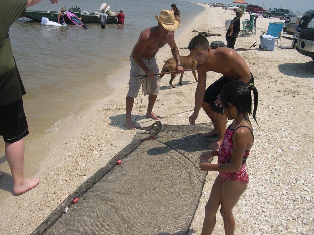 Shrimps - Gulf of Mexico - Texas