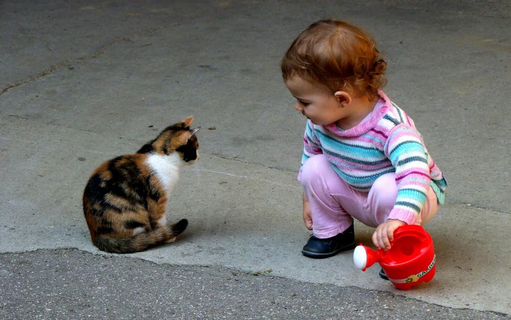 Kennenlernen von kindern