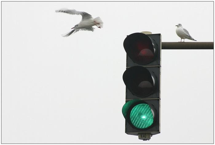 Sicherer Verkehr...