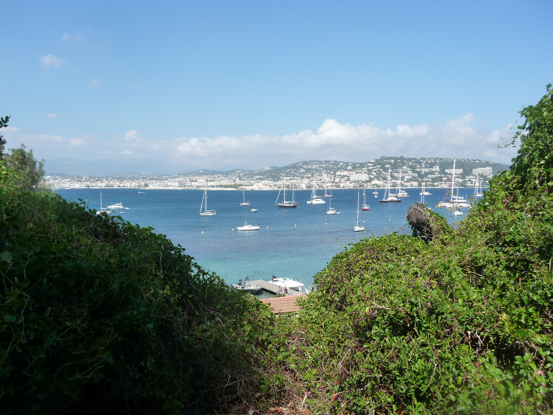 Sicht auf Cannes und die Boote :)