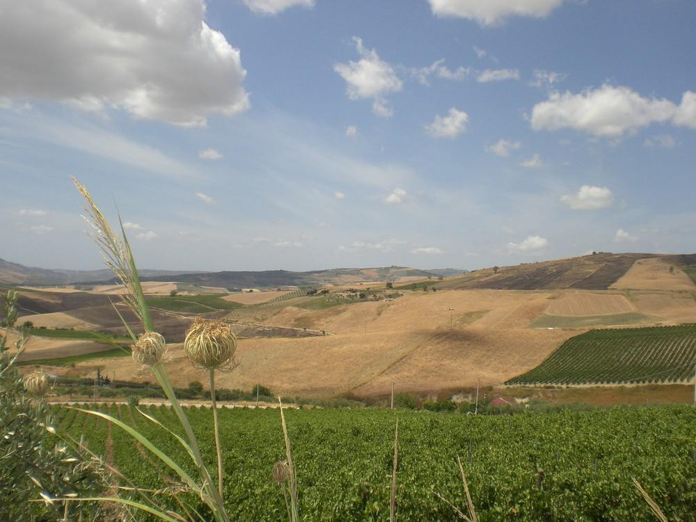 Sicilia, non solo mare