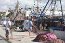 IT: Sicilia : porto di Trapani ... Sicily : Trapani harbour ... Sicile : le port de Trapani. von Christian Bertero