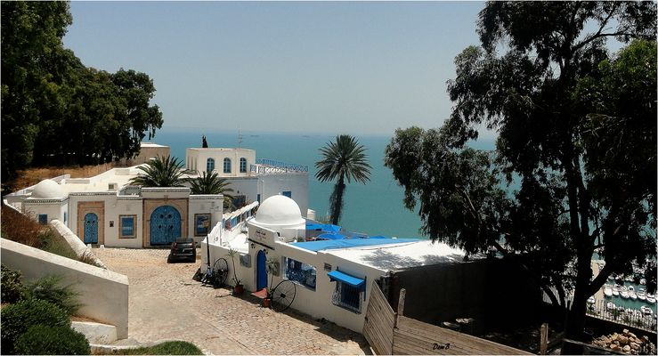 Sidi Bou Said - Le café des Délices