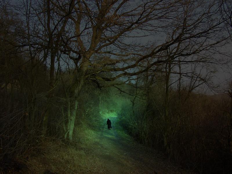 Sie geht wieder durch den Habichtswald